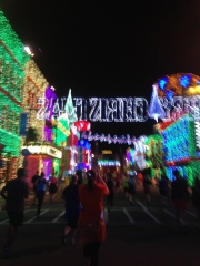 A running snap shot of Osbourne Lights during the race (weird seeing it so empty right?)