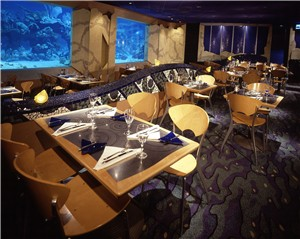The Dining Room at Coral Reef (aside from the tank) was quite colorful but rather boring again aside from the tank!!!